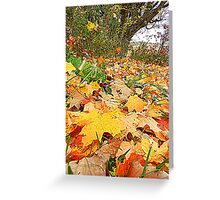 The Surrender of Leaves Greeting Card