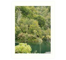 Beauty of mountain lake Art Print