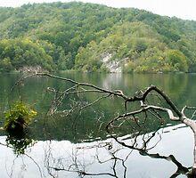 Lake in Croatia by pisarevg