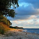 And again the Baltic Sea is calling by jchanders