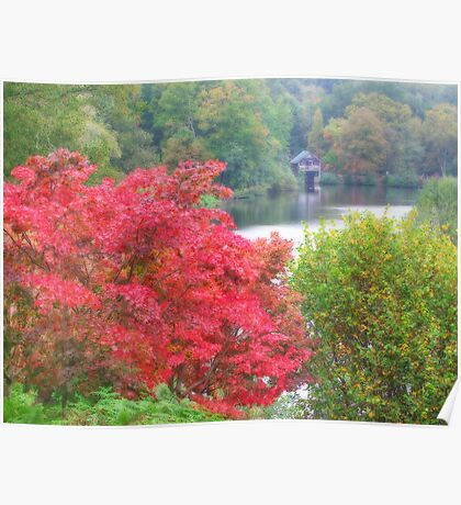 The Boathouse At Winkworth Arboretum - Orton Effect Poster