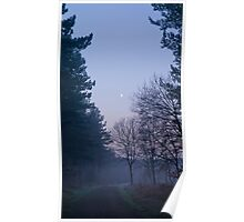 Haw Park Wood Poster