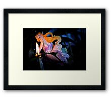 FAIRY DREAMS Framed Print