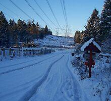 Winter Blues by DorotheaK