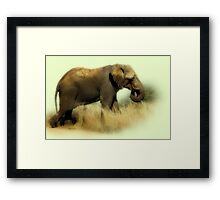 TOOTHLESS ELEPHANT Framed Print