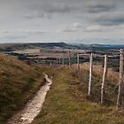 South Downs by jamesdt