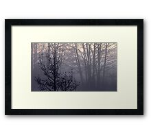 25.10.2012: From the Autumn Dreams Framed Print