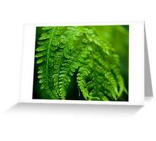 Green Focus Greeting Card