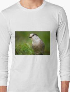 Gray Jay Long Sleeve T-Shirt