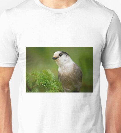 Gray Jay Unisex T-Shirt