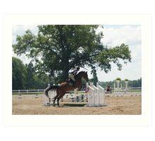 Horse Jumper Art Print