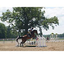 Horse Jumper Photographic Print