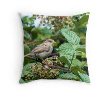 House Sparrow Throw Pillow