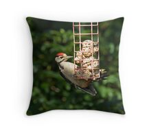 Great Spotted Woodpecker in sunlight Throw Pillow