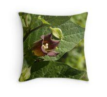 Deadly Nightshade wild flower Throw Pillow
