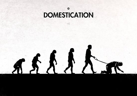 99 Steps of Progress - Domestication by maentis