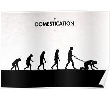 99 Steps of Progress - Domestication Poster