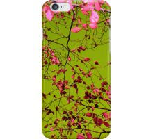 autumn tree II iPhone Case/Skin