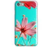 cosmos flowers iPhone Case/Skin