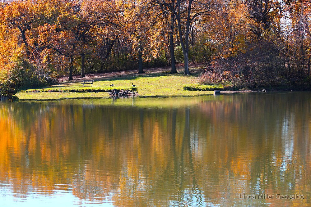 Autumn Reflections At the Lake by Linda Miller Gesualdo