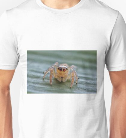 The Jumping Spider T-Shirt