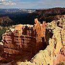 Sunlit Canyon by Brendan Buckley