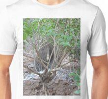Lyrebird nest, Purnululu National Park, Western Australia Unisex T-Shirt
