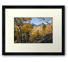 Fall Hike Framed Print