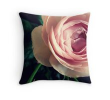 Stop to smell the roses 2 Throw Pillow