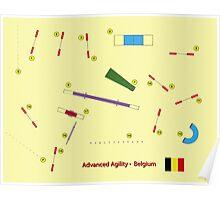 Agility Advanced Poster