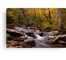 Hills Creek Canvas Print
