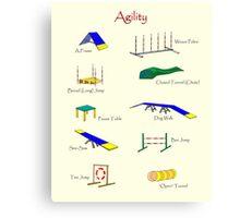 Agility Equipment Canvas Print