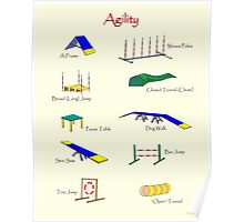 Agility Equipment Poster