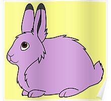 Light Purple Arctic Hare Poster
