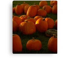 Pumpkin Menagerie, 2012 Canvas Print