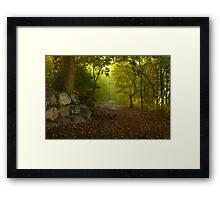 Lakeside Path, Ullswater Framed Print