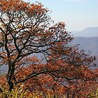 Appalachian Mountains / history before the national park by JeffeeArt4u
