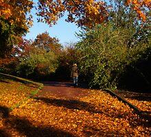 Forever Autumn by Nik Watt