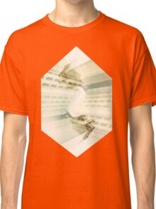 And this is what I see from here Classic T-Shirt