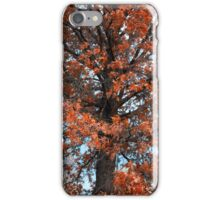 Autumn Beauty iPhone Case/Skin