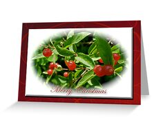 Merry Christmas Greeting Card - Honeysuckle Berries Greeting Card