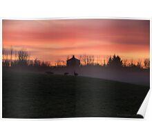 morning walk in the fog Poster