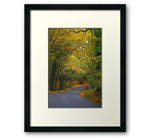 Autumn colours 2012 Framed Print