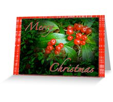 Merry Christmas Greeting Card - Honeysuckle Berries Greeting Card