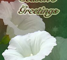 Season's Greetings Card - Bindweed Wildflower by MotherNature