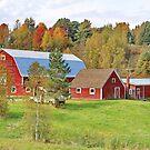 Barn In Autumn by Deborah  Benoit