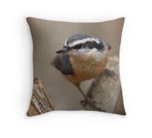 Nut Hatch - Ottawa, Ontario Throw Pillow