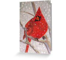 A Cardinal Winter Greeting Card