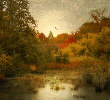 Autumn Wetlands by Jessica Jenney