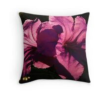 Mexican Petunia two Throw Pillow